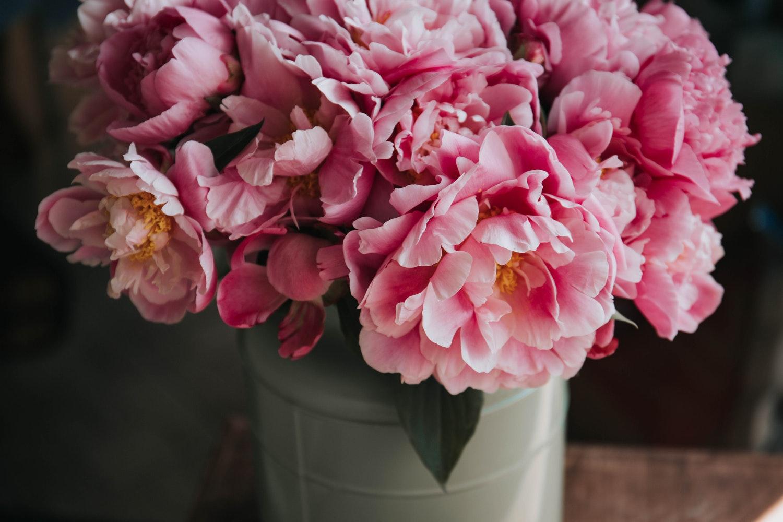 çiçek, flower