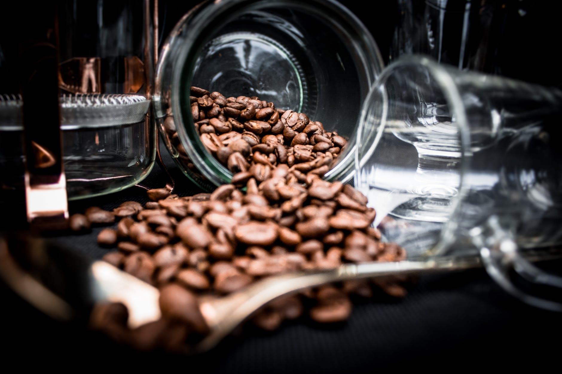 Tanzanya Kahvesi, Tanzania Coffee