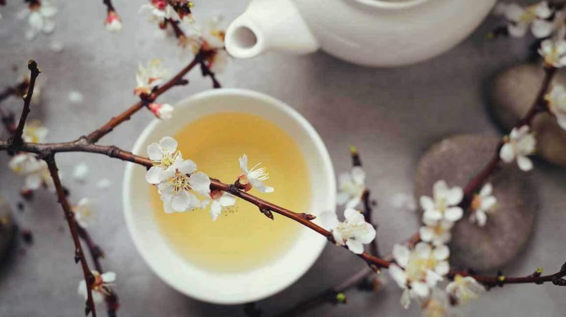 Beyaz Çay, White Tea
