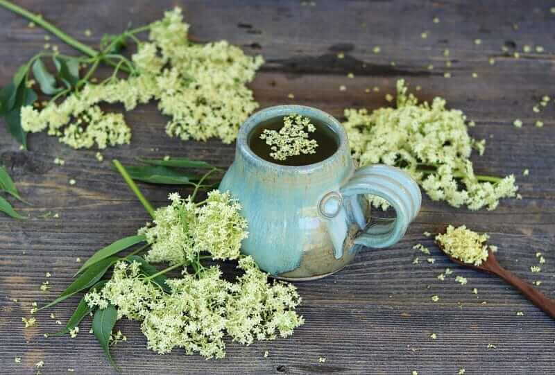 Mürver Çiçeği Çayı, Elderberry Flower Tea