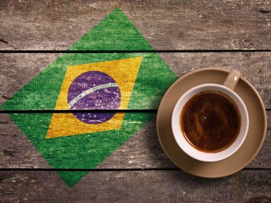 Brezilya Kahvesi, Brazil Santos Coffee
