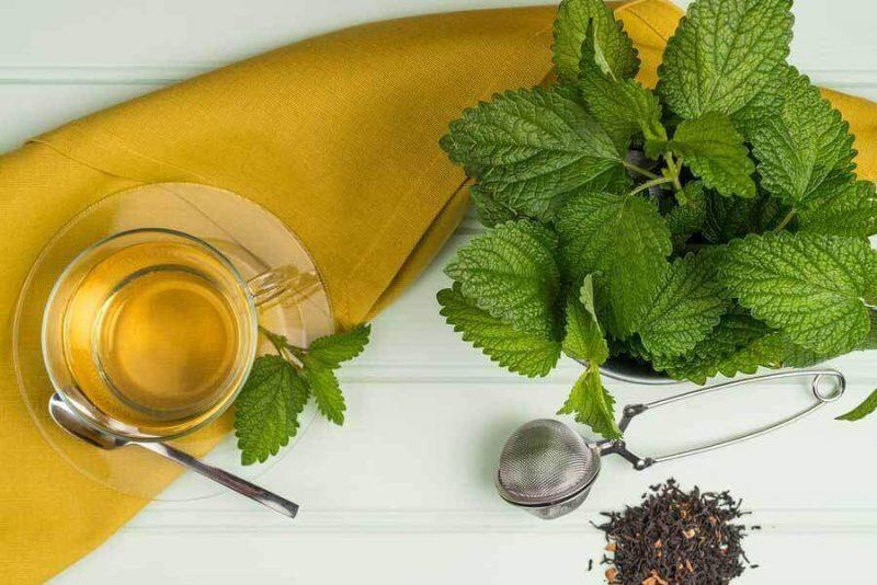 Melisa Çayı, Melisa Tea