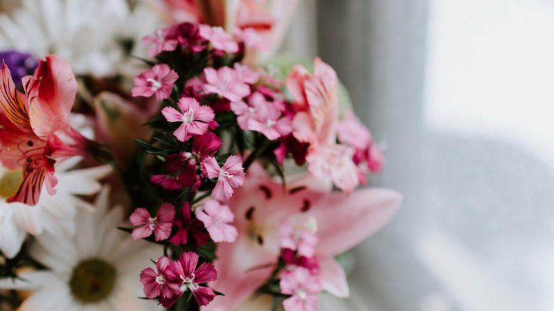 Çiçek Aranjmanı İçin Çiçek Seçimi