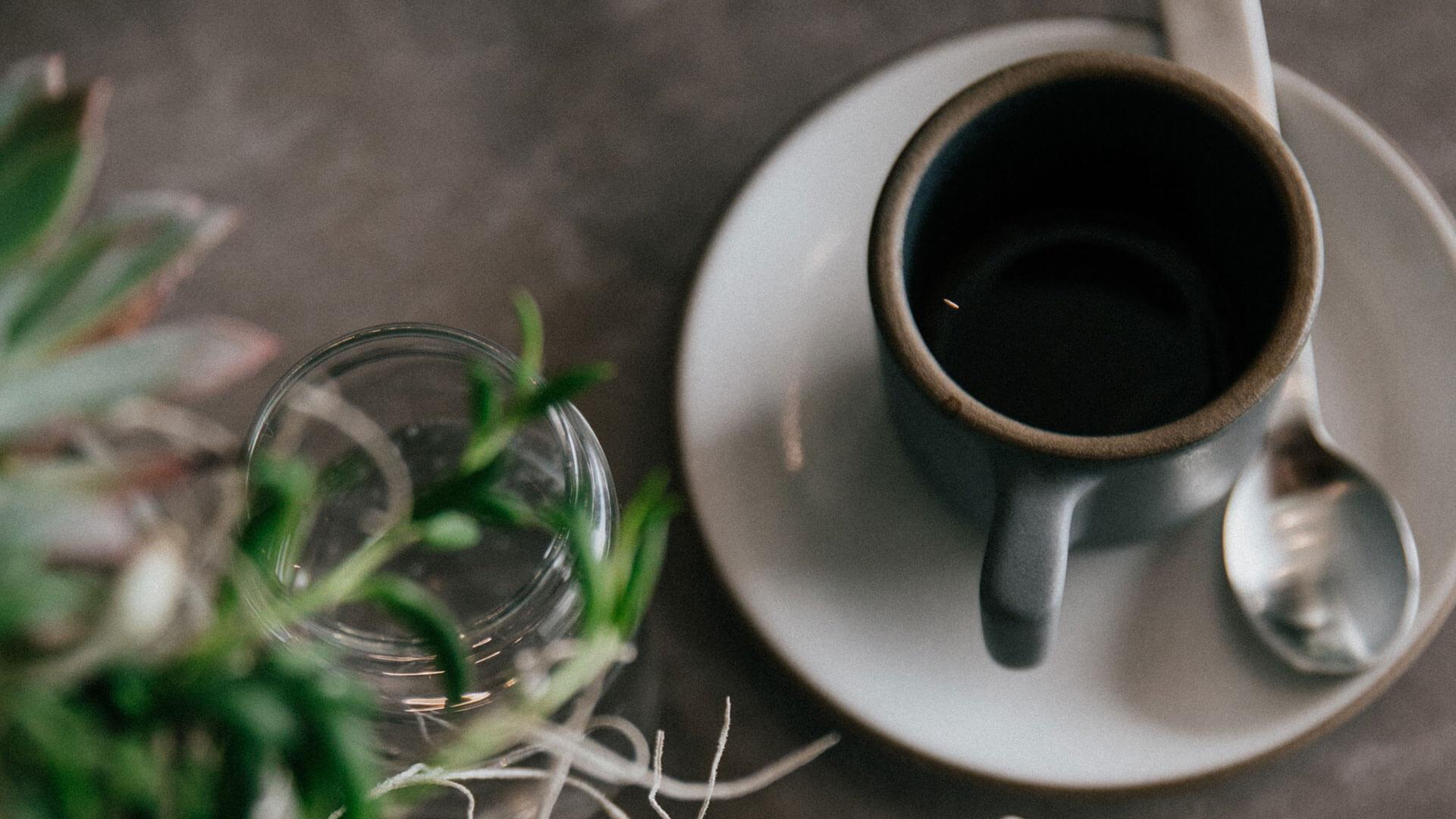 kopi-luwak-kahvesi-hakkinda-sorular