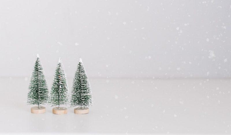 muhiku-hediyeleri-ile-buyuk-kucuk-herkes-mutlu