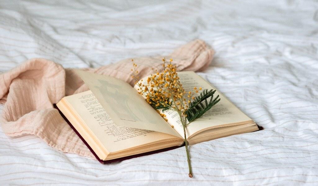 kitap-okumayi-seven-kisiye-alinacak-hediyeler