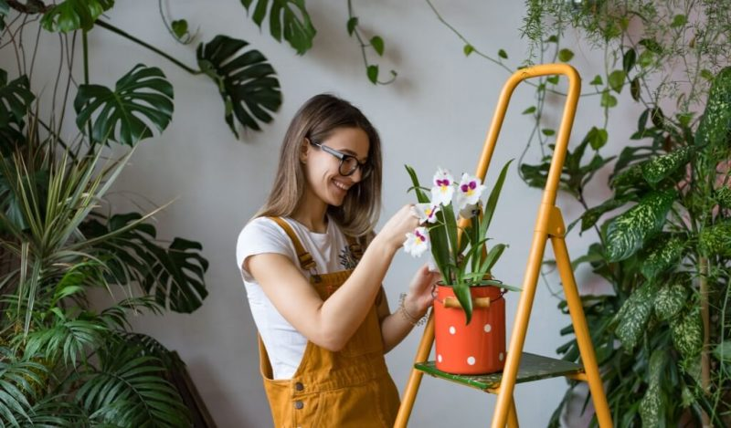 orkide-cicek-actirma-yollari