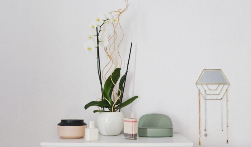 orkidenin-yeri
